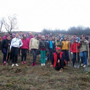 Proiect Ziua Buna Ziua Voluntarilor Mici